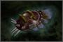 Beast Gauntlet (DW4)