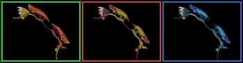 DW Strikeforce - Bow 17