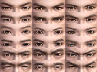 File:Male Eyes (DWN).png