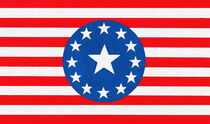 Federated States of America Flag