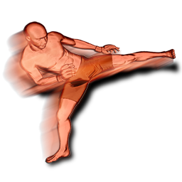 File:Side kick body action.png