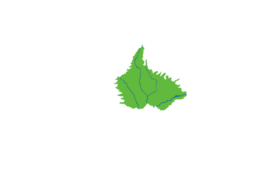 Map overlay Servos Jungle