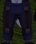 Sleek Pants