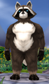 Rotund male bandicoon