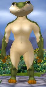 Normal female anura