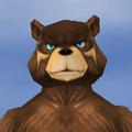 Face-old Male-Ursine