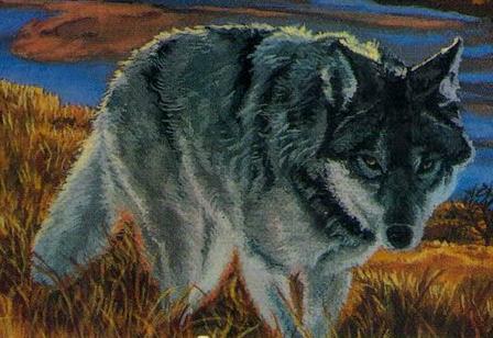 File:Wolf Plains Passage.png