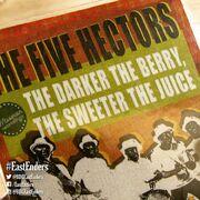 The Five Hectors Vinyl Record