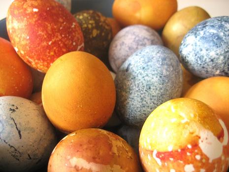 File:Eggsclose2.jpg