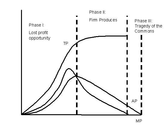 File:Product curves.JPG