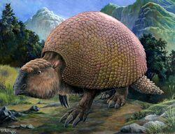 Glyptodon2