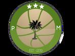 PM basketball