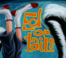 Ed or Tails