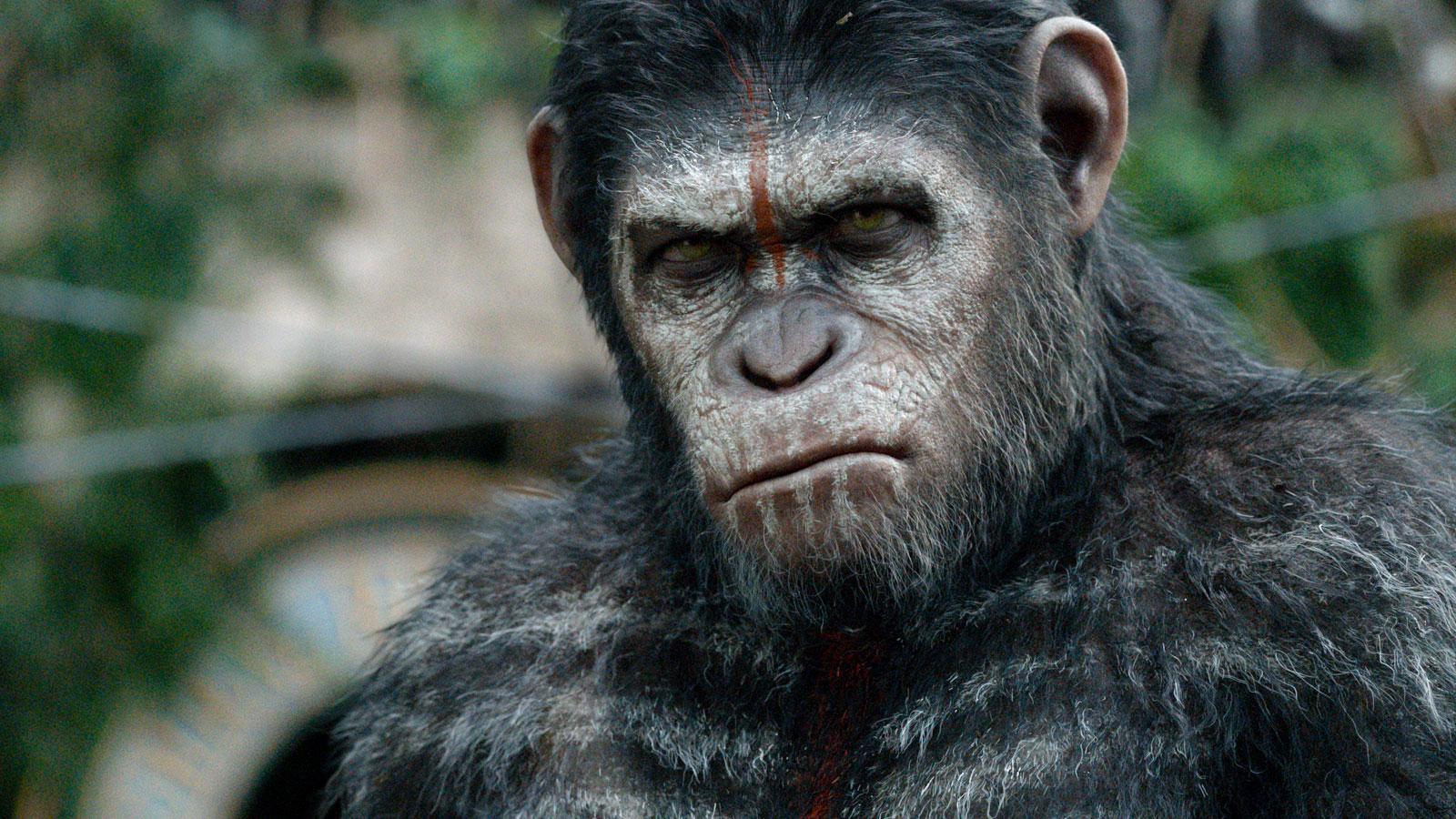 Resultado de imagen para muerte de cesar planeta delos simios
