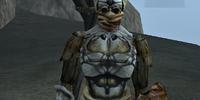 Emul-Ran