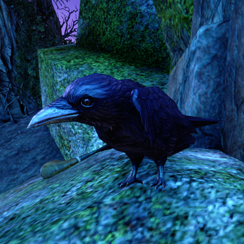 File:ESO Duke of Crows.png
