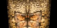 Chitin Tower Shield