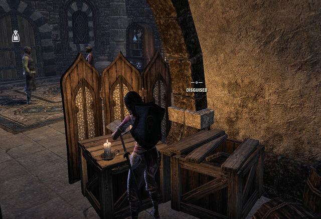 File:Disguised in quest.jpg