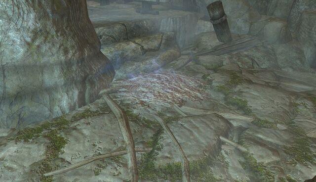 File:Halldir's Remains.jpg