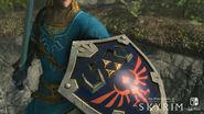 SkyrimSwitch Shield