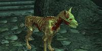 Ushnar's Skinned Hound