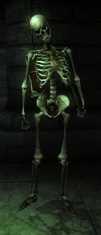 File:Skeleton hero archer.png