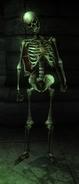 Skeleton hero archer