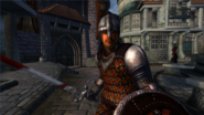TESIV Guard Anvil 2