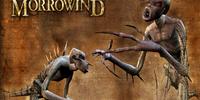 Hunger (Morrowind)