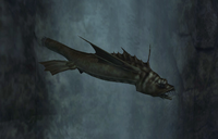 Giant Slaughterfish