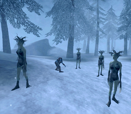 Riekling surrounded by Spriggans