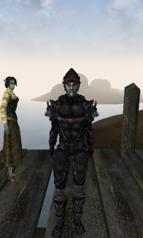 File:Wolf Armor MW.png