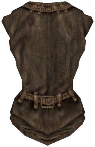 File:ShirtCommon06F.png