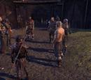 A Council of Thanes