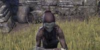 Vereansu Warrior