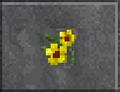 Yellow Flowers (Daggerfall).png