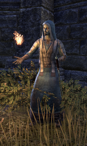 File:Mage Vendras.png