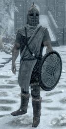 Winterhold Guard.png