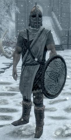 File:Winterhold Guard.png