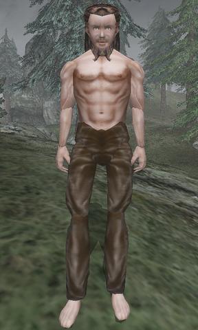 File:Fanar Fork-Beard - Morrowind.png