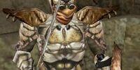 Chitin Armor (Morrowind)