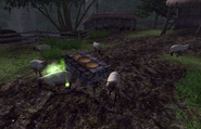 Sheogorath Quest Plague