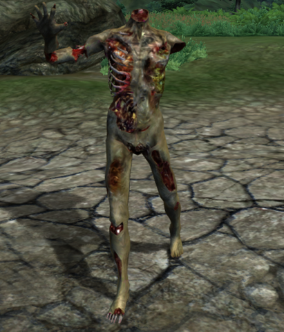 File:Burning Zombie.png