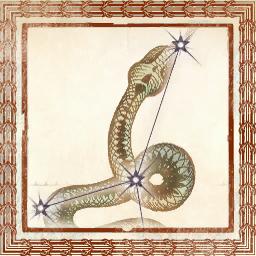 File:TESIV Sign Serpent.png