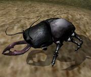 Shalk - Morrowind