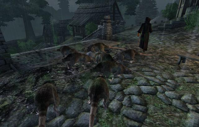 File:Sheogorath Quest Rats.png