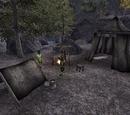 Walker Camp