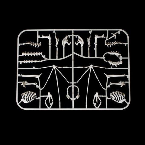 File:Skyrim Skeletal Dragon Kit Pieces (Packed).jpg