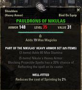 Nikulas Heavy Armor - Pauldrons 35