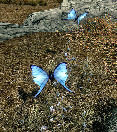 File:Blue Butterfly.png